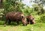 Rhino Walking Safari at Mosi-oa-Tunya National Park,