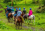 Arenal Canopy and Horseback Riding Adventure, ,