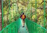 Rainforest Skywalk & Tarcoles River Eco Cruise Tour Puntarenas Shore excursion. Puntarenas, COSTA RICA