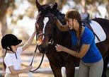 Horse Riding Lesson in Kalamata, Kalamata, Grécia