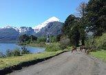 Recorrido al Volcán Lanin y Lago Huechulafquen,