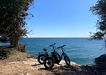 Cave Point Fat Tire E-Bike Tour, Green Bay, WI, UNITED STATES