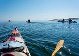 Stockholm Archipelago Tour by Kayak,