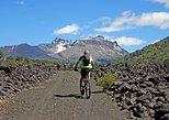 San Martin de los Andes Small-Group Mountain Bike Adventure,