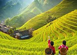 3-Day Private Guilin Highlights Tour from Shenzhen by Bullet Train, Shenzhen, CHINA