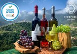 Skywalk & Professional Wine Tasting and Vineyards Tour in Open Roof 4x4. Funchal, PORTUGAL