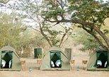 Safari con acampada de 3 días en el Parque Nacional de Chobe desde las Cataratas Victoria. Cataratas Victoria, ZIMBABUE