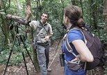 Caminata privada de historia natural - mañana o tarde, Puntarenas, COSTA RICA