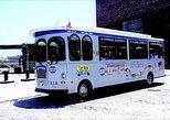 Excursão de bonde com várias paradas em Boston com Cruzeiro de portos opcional. Boston, MA, ESTADOS UNIDOS