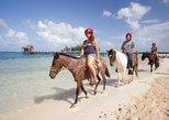 Excursión combinada de medio día en Roatán a caballo, tirolina, monos, perezosos y esnórquel. Roatan, HONDURAS