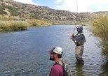 Private Full-Day Fishing Experience in San Juan River, Durango, CO, ESTADOS UNIDOS