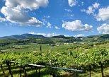 2-Hour Amarone Wine Tasting Valpolicella Classico, Vicenza, Itália