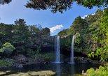 Scenic Escape with Glow Worm Caves, Bahia de Islas, NUEVA ZELANDIA