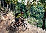 eMtn Bike Experience, National Park Trails, Afternoon Ride, Noosa y Sunshine Coast, AUSTRALIA