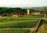 Tour das Provas de Vinhos na Casa Valduga com Passeio de Trem Maria Fumaça, Gramado, BRASIL