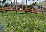 2-Day Tour Nickerie with a Boat Trip in Bigipan, Paramaribo, SURINAM
