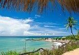 South Coast And Pipa Beaches Tour On A 4X4, Natal, BRASIL