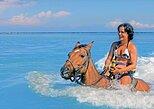 Chukka Horseback Ride & Swim with Park Admission, Ocho Rios,