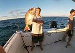 3/4 Day 7 Hour Offshore Fishing Charter, Noosa y Sunshine Coast, Austrália