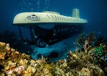 Atlantis Submarine Expedition in Cozumel,