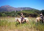 Horseback Riding on Vesuvius, Pompeya, Itália