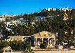 Excursión Privada Dia Completo a Jerusalén y Belén desde Amman,