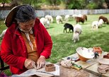 Traditions of Northwest Argentina,