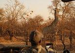 Game Drive+Rhino Viewing,