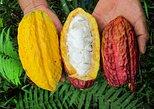 Guayaquil to Cuenca + Cacao farm and Cajas N.Park & ending in Cuenca, Quito, ECUADOR