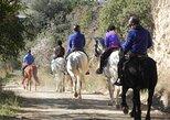 Horseback Riding on Collserola mountain natural park, Barcelona, Spain,