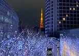 Tokyo in a Day Private Custom Tour Half- or Full-Day Option,