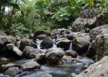 Aventura de día completo en la selva y cataratas desde San Juan,