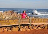 Excursão particular: Cabo da Boa Esperança e Cape Point partindo da Cidade do Cabo,