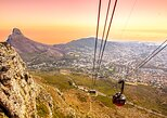 Cape Town to Table Mountain, Penguins, Cape Point: Group Tour,