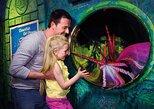 SEA LIFE Orlando Aquarium,
