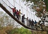 Lekki Conservation Center Extraordinary Tour,