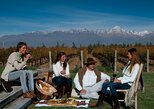 Deluxe Uco Valley Private Wine Tour with Gourmet Lunch, Mendoza, ARGENTINA