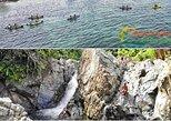 Rainforest, Bio Bay, Luquillo Beach Trio Tour, Fajardo, PUERTO RICO