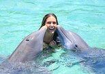 Dolphin Cove Private Tour,