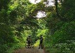 Mountain Bike Ride, Liberia, COSTA RICA