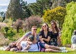 Full-Day Wine Tour in Waipara From Hanmer Springs with Tasting, Hanmer Springs, NUEVA ZELANDIA