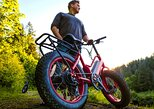 Electric Bike Rentals, Port Angeles, WA, ESTADOS UNIDOS