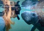 Excursão com mergulho com snorkel no rio Crystal, aerobarco por Everglades e Homosassa,