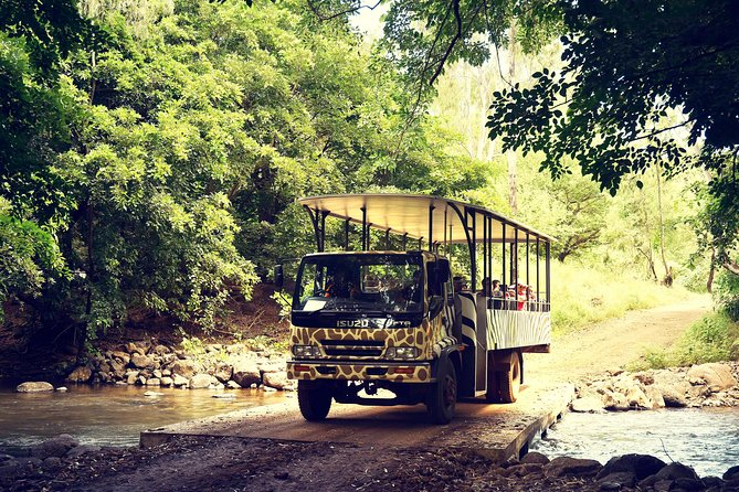 This ticket will give you access to the Casela Nature Park. Included: *Safari (Zebras, Ostriches, White Rhinoceros, Impalas, antelopes, Kudus, wildebeest), 1500 species of birds, walk 1 hour Aviary, Viewing of giraffe, pygmy hippos, camels and llamas, petting farm, children's playground), Avalanche Mine (Toboggans x 2), Big Cats kingdom, monkey kingdom, tortoise pen, 4D Cinema and brand-new ride. <br><br>Please note that Casela will only be closed on the 25th December 2019 and on 1st January 2020. The Big Cats Kingdom will be closed on the 24 December 2019 and 31 December 2019. <br><br>Big cats activities are not operational on Sundays.