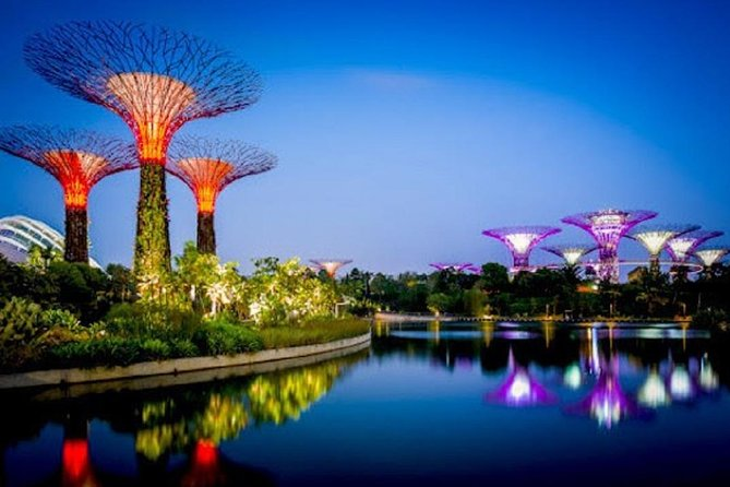 Visit Gardens By The Bay - Marina Bay's Famed Gardens! This sprawling garden in the city provides mesmerising waterfront views across three gardens, spanning over 101 hectares of reclaimed land.