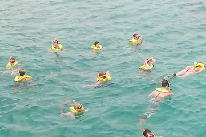 Falmouth Shore Excursion: Private Snorkel Tour, , JAMAICA