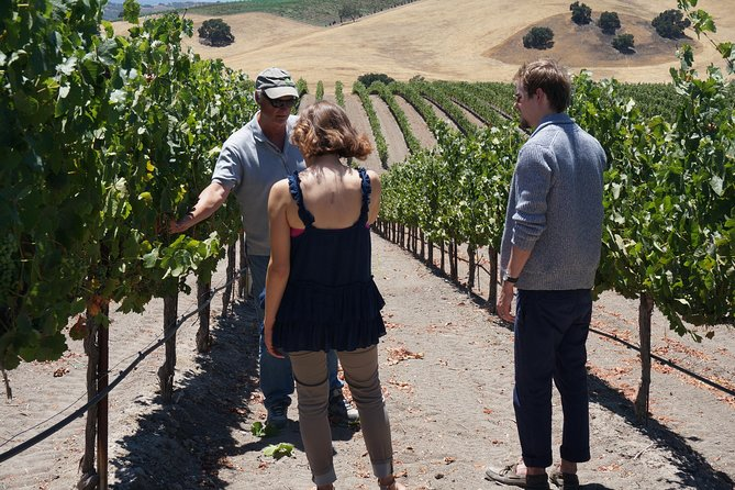 This Santa Barbara wine tour is ideal for couples and small groups. On this full-day excursion, you can relax and enjoy the scenery as you are chauffeured to boutique estate wineries for private, seated tastings. You will have an intimate experience as you meet winemakers in private intimate settings that are not open to the public.<br><br>You will be tasting wine right out of the barrel wen available. The itinerary may change, but most likely, you will be tasting in a cellar, and at 2 vineyard settings. You will enjoy a picnic style lunch at one of the vineyards we will visit.