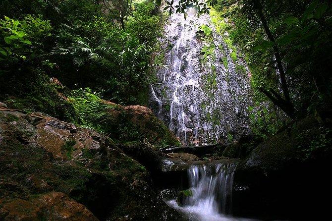 Full day tour to La Tigra and El Picacho National park, Tegucigalpa, Honduras