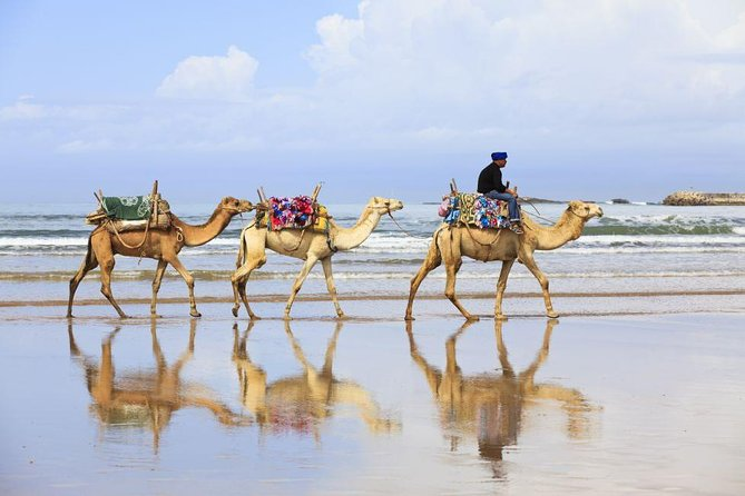 4 Hours Private Tour of Tangier, Tangier, MARROCOS