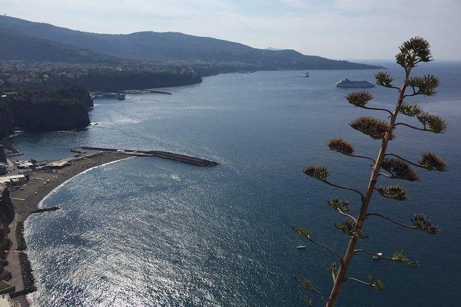 Full-Day Private Sorrento & Amalfi Coast Tour from Positano, Positano, ITALY